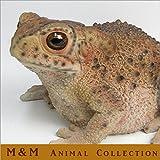 動物オブジェ アニマルコレクション M&M W466 カエル ヒキガエル かえるの置物