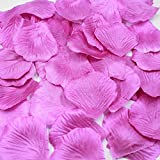 バラバラの薔薇の花びら【造花】1枚1枚はがしたばらばらの花弁です。結婚式 フラワーシャワー バージンロード テーブルディスプレイ 誕生日 バレンタインデー クリスマス コサージュ 演出 (PURPLE) たっぷり1000枚