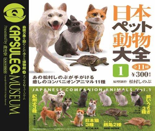 カプセルQミュージアム 日本ペット動物大全 第一集 全11種 海洋堂 ガチャポン
