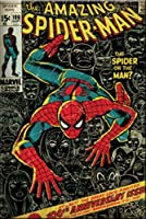 Licenses Products Marvel Comics Spider Man Comic Cover Magnet [並行輸入品]