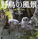 野鳥の風景: 髙城芳治写真集
