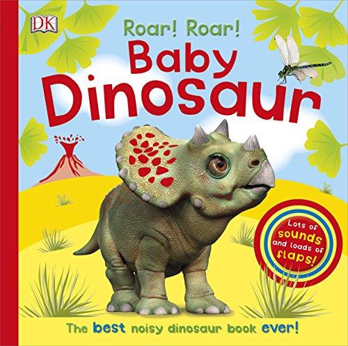 Roar! Roar! Baby Dinosaur (Dk)