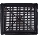 HomeLeisure Grow Your Own Seedling Tray, Black, 350 mm Length