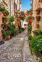 leyiyiイタリア旅行撮影写真背景5x 7ft有名European Street Buildingsウェディング写真背景Spring Flowers StoneパスブルースカイGirlsビニールStudioフォトPotrait背景