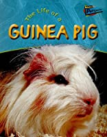 Life Of A Guinea Pig (Life Cycles)