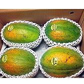沖縄県産 フルーツパパイヤ 約2kg(2-6玉) 甘くて酸味が少ないフルーツ