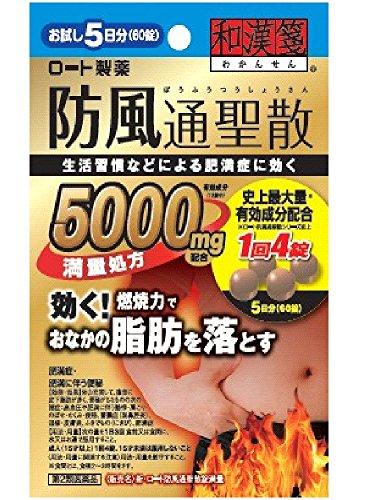 (医薬品画像)新・ロート防風通聖散錠