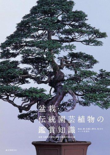 盆栽・伝統園芸植物の鑑賞知識: 銘品、器、伝統と歴史、見方のルールを知る