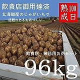 100日熟成じゃがいも (キタアカリ 男爵 メークイン とうや 4品種 各24kg )計96kg 北海道十勝産【飲食店、業務用】越冬プレミアム100 減農薬栽培 ジャガイモ じゃが芋 ジャガ芋