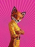 ファンタスティックMr.FOX [DVD] 画像