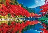 1000ピース ジグソーパズル 秋晴れの香嵐渓(49×72cm)