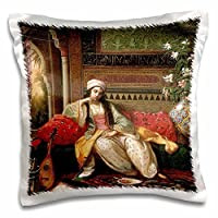 """3drose BLN Middle Eastern and Northern African Fineアートコレクション–The新しいCaptive byジョン・カーリン–枕ケース 16"""" x 16"""" pc_127402_1"""
