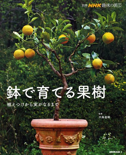 鉢で育てる果樹―植えつけから実がなるまで (別冊NHK趣味の園芸)の詳細を見る
