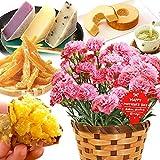 母の日 の プレゼント カーネーション 鉢花ギフト 花と豪華スイーツ (ピンク)