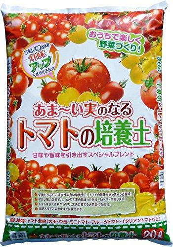 【2個セット】あまーい実のなるトマトの培...