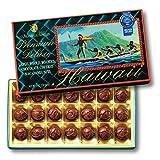 [ハワイお土産] ラージマカデミア デラックスチョコレート(袋付) 1箱 (海外 みやげ ハワイ 土産)