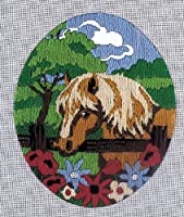 Horse in Field, Learning Embroidery by Numbers by Color5
