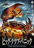 ビッグクラブパニック [DVD]
