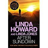 After Sundown: an irresistibly gripping romantic thriller