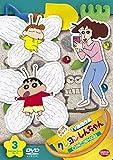 クレヨンしんちゃん TV版傑作選 第13期シリーズ 3 寝ている間にアートだゾ [DVD]
