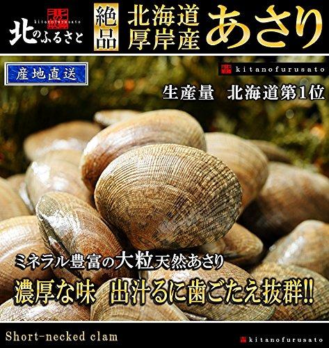 北海道厚岸産 特大あさり 1kg 【産地直送】牡蠣が美味しいところに、あさりあり!!