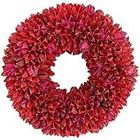 彩か SAIKA 【クリスマス】 リース 赤系 レッド デコレーション 飾り Bloom Berry Wreath M (Red) CXQ-110Sr