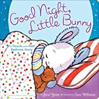 Good Night, Little Bunny: A Touch-and-Feel Bedtime Story