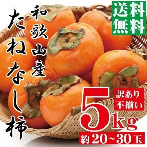 [訳あり] 和歌山 たねなし柿 5kg(サイズ不揃い,傷あり,ご自宅用)