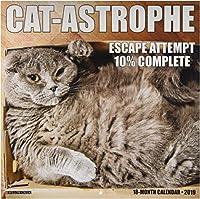 Cat-Astrophe 2019 Calendar