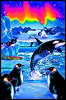 Opticz Arctic Aurora Blacklight Reactive Poster by Opticz