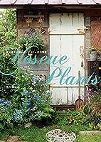 Yoseue Plants 寄せ植えに使いたい、12ヶ月の草花