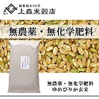 北海道産 無農薬ゆめぴりか玄米5kg