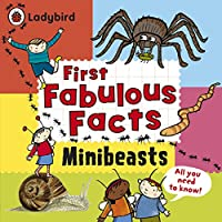 Ladybird First Fabulous Facts Minibeasts