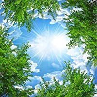 Hanhantang 3D壁紙青空白木森林天井天頂背景装飾壁紙-250X175Cm