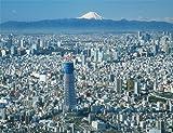 500ピース ジグソーパズル プチ2 東京スカイツリー(R) -富士を望む- スモールピース(16.5x21.5cm)