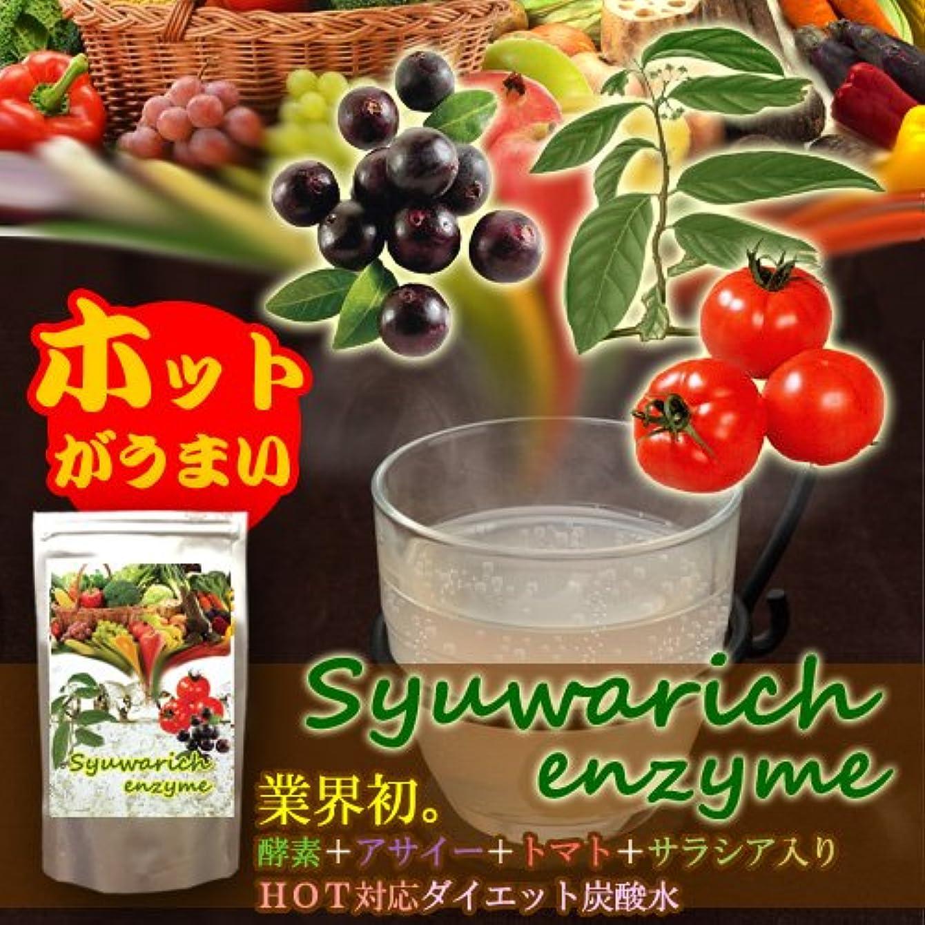 本物モールアークシュワリッチ エンザイム 2個セット(酵素+アサイー+トマト+サラシア+フォルスコリ配合 ホット対応ダイエット炭酸水)