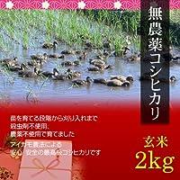 【お歳暮・冬ギフト】無農薬米コシヒカリ 2kg 玄米・贈答箱入り/ギフトにアイガモ農法で育てた安全な新潟米