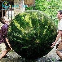30個/非常に甘い家宝フルーツ野菜植物園スイカtreeHomeファーム植物バッグジャイアントウォーターメロン植物:アーミーグリーン