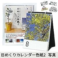 日めくりカレンダー色紙 2 写真 AR0819122