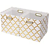 OZEL Mall Foldable Storage Bins with Two Metal Handles [2-Pack], Storage Boxes Cubes, Container Organizer Baskets, Fabric Dra
