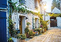 Sprooudbz 地中海風景ストリート 3 D の壁画壁紙 400 cmX 280 cm