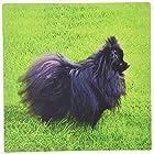 3Dローズ 犬 ポメラニアン - 黒ポメラニアン - マウス パッド - マウスパッド - mp_939_1 (並行輸入)