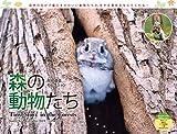 カレンダー2019 太田達也セレクション 森の動物たち Tiny Story in the Forests (ヤマケイカレンダー2019)