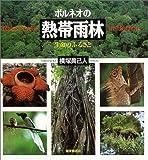 ボルネオの熱帯雨林―生命のふるさと (福音館の科学シリーズ)