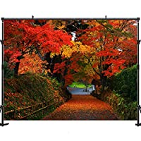 Allenjoy 秋の風景 落ち葉 写真撮影用背景 7x5フィート 木と秋の葉 写真 背景 自然シーズン 背景 秋の木 ストリート 道路 写真 スタジオ 小道具 フォトブースポスター