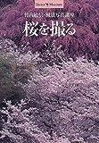 桜を撮る—竹内敏信・風景写真講座 (ショトル・ミュージアム)