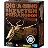 4M KidzLabs DIG-A-DINO SKELETON 恐竜発掘 プテラノドン