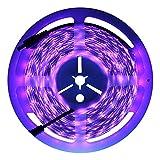 UVブラックライトLEDストリップ16.4Ft / 5m 3528300個柔軟な防水規格ip65Blacklight夜釣りSterilization Implicitlyパーティーwith 12V 2A電源供給