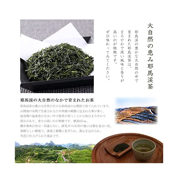 耶馬渓茶 耶馬の八景 Y-70 300gの紹介画像2