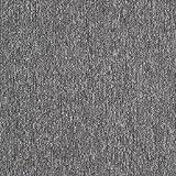 スミノエ タイルカーペット ECOS PX-4201 50X50㎝ 20枚入